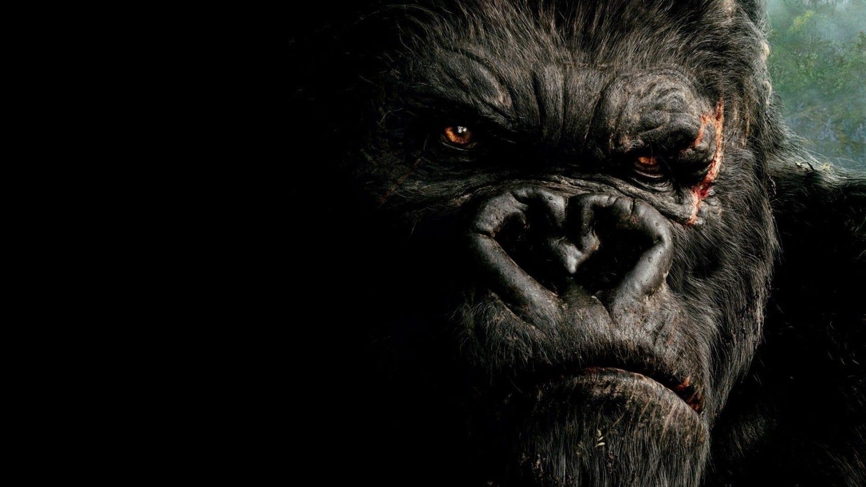 King Kong News My Geek Actu