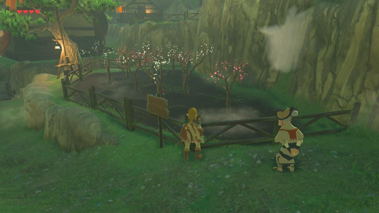 The Legend of Zelda Breath of the Wild Test Cerisier japonais