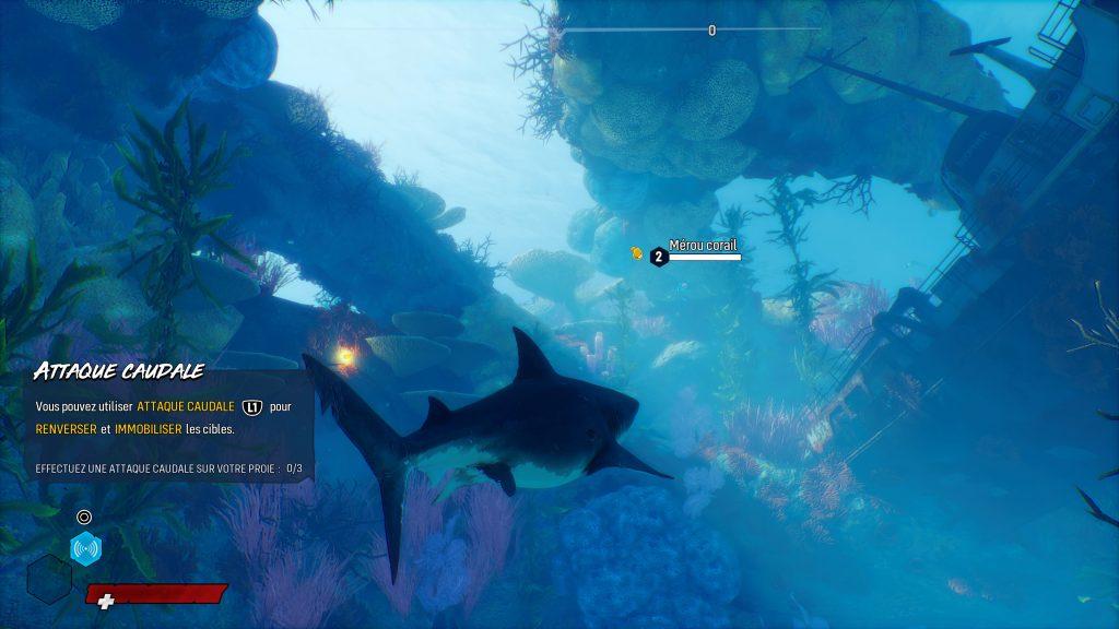Ce poisson, je vais le manger