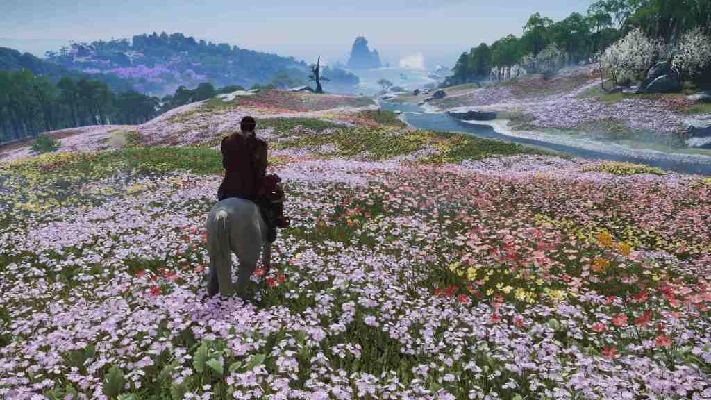 Ile d'Iki - fleurs